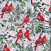 Fleece (not for masks) Red Bird Cardinal Fleece Fabric Print by the Yard a21707b